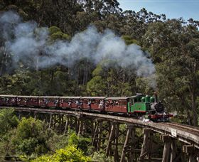 Puffing Billy Steam Railway